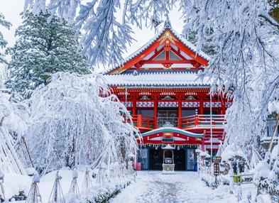 Chào mùa đông Nhật Bản cùng ALL NIPPON AIRWAYS